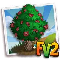 Herilioom Monkey-Puzzle Tree