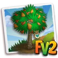 Heirloom Windmill Palm Tree